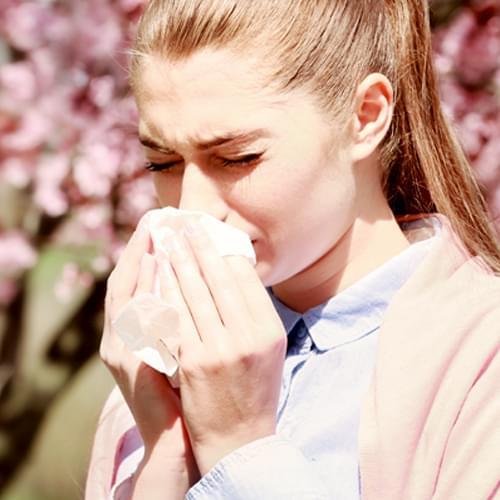 Miten <span>NASACORT<sup>®</sup></span>-nenäsumute vaikuttaa kausiluonteista siitepölyallergiasta johtuviin nenäoireisiin?